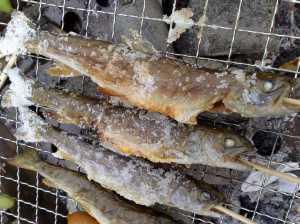 20090504岩魚の塩焼き
