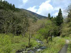 20100501湖北の渓