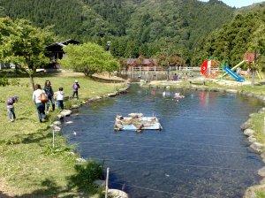20100529鯉の池